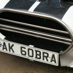 Triple Splitter Wing for Cobra